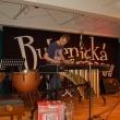 Štěpán Marek a marimba